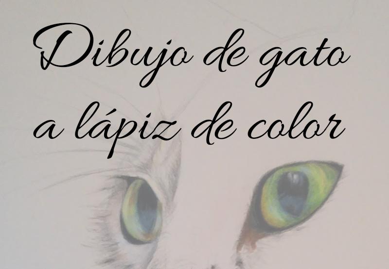 Dibujo De Gato A Lápiz De Color