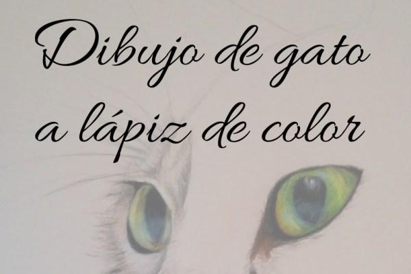 dibujo de gato a lápiz de color cabecera