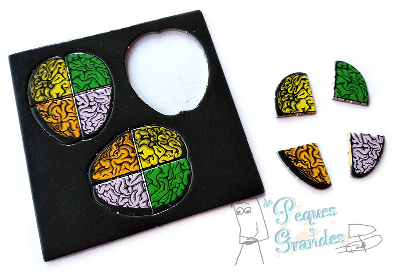 puzle cerebro