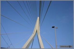 © De Perfecte Foto - Rotterdam (111) (Kopie)