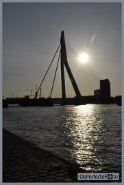 © De Perfecte Foto - Rotterdam (28) (Kopie)