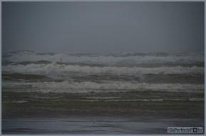 tuin_hvh_storm_hvh__97 (vk)