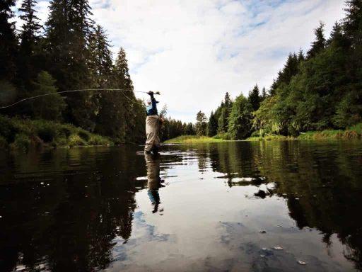 Las 5 mejores cañas de pesca a mosca para el 2020. Lo que debes saber sobre la Pesca a Mosca Trucos y Consejo