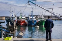 Puerto pesquero de Hondarribia
