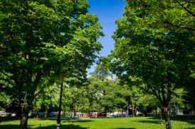 """Parque de """"El Pinar"""" (Irun)"""
