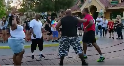 Fight breaks out at Disneyland