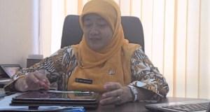 Kabid Pelayanan Kesehatan, May Haryanti.