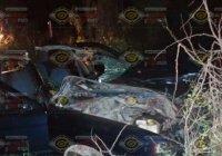 Muere un hombre y un toro en trágico percance carretero sobre el libramiento FMP en Tecomán