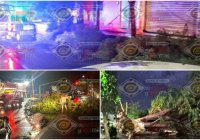 Azota tromba al municipio de Tecomán, se reportan inundaciones y árboles caídos