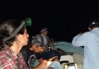 Estudian población de cocodrilos en Sinaloa, Nayarit, Jalisco y Colima