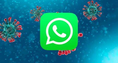 Coronavirus | Pandemia | WhatsApp lanza una serie de ...
