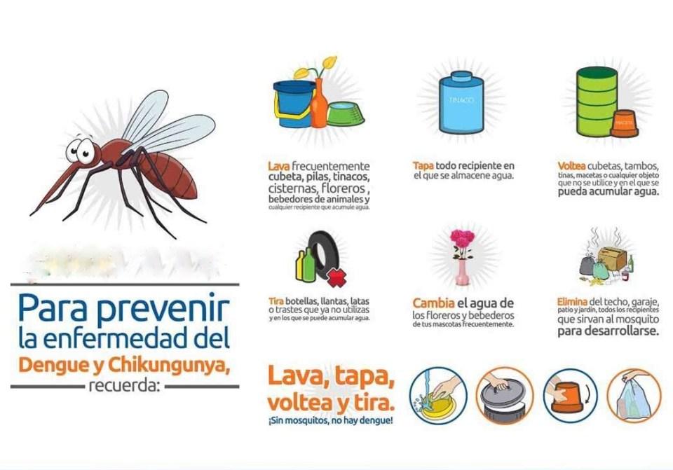 diferencias entre dengue, chikungunya y zika