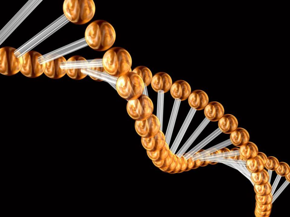 qué es la Hipercolesterolemia familiar genética