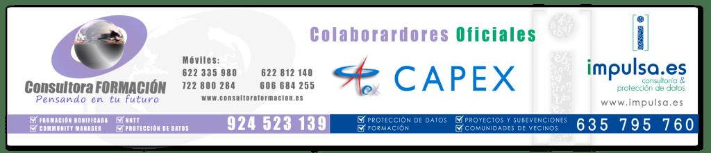 Faldón Capex-Consultora---Impulsa Colaboradores