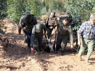 FEDEXCAZA, preocupada por un nuevo requerimiento de la Junta que amenaza a las sociedades locales de caza