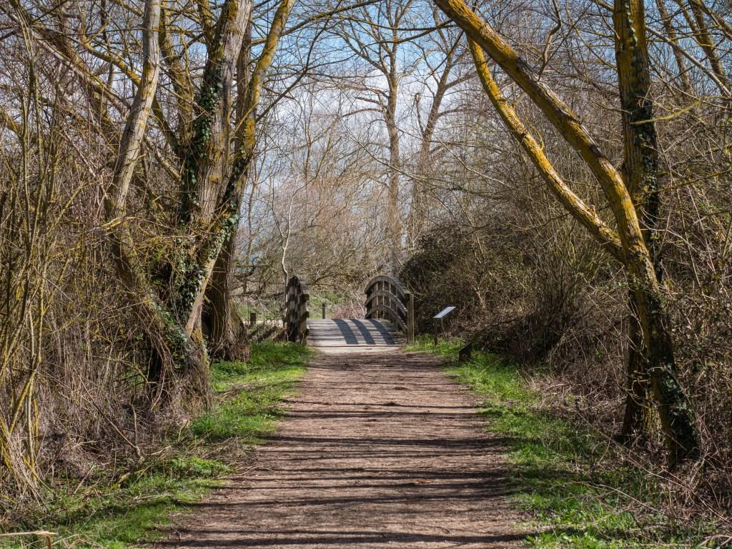 Vitoria - Parque de Salburua - crédito WikimediaCommons