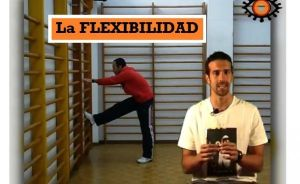 Video sobre la FLEXIBILIDAD