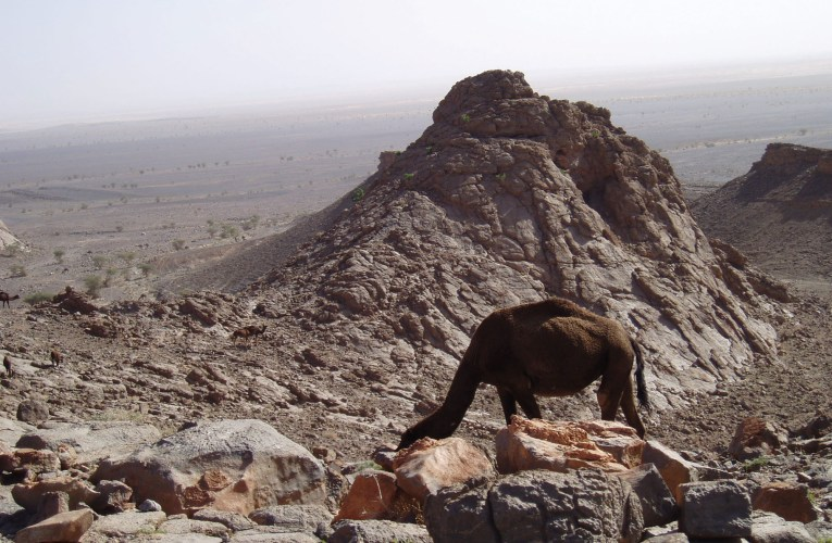 Natural wonders of the Maghreb in Morocco