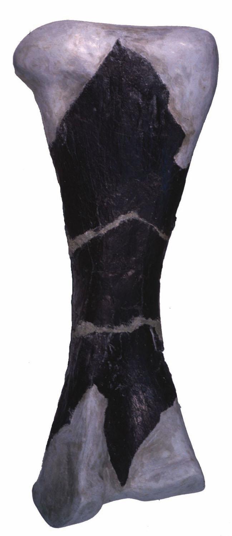 leg1large