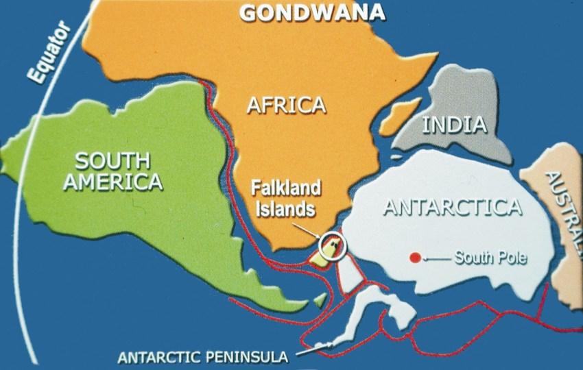 fig-1-gondwana