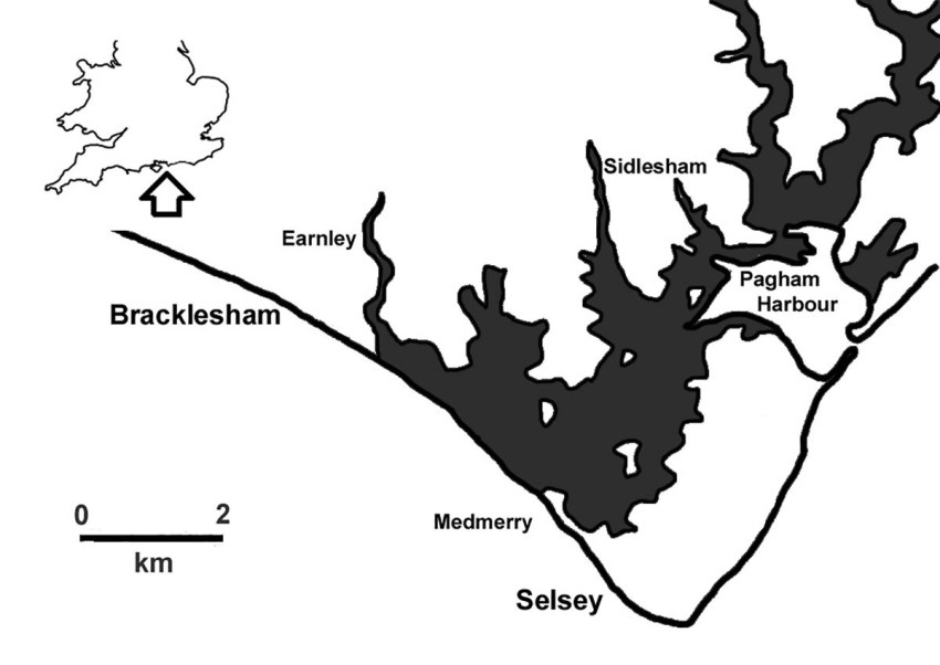 Fig 1 Location map and land at risk of flooding (shaded; based on Envron...
