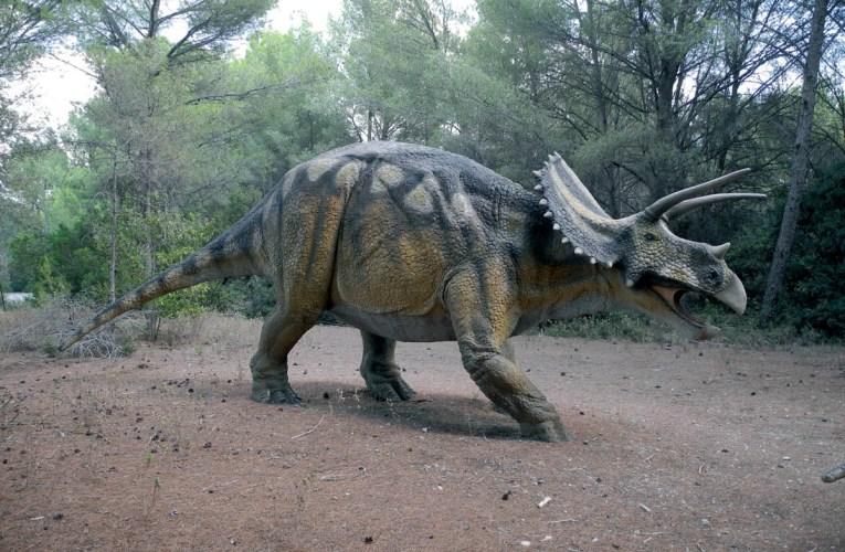Musée-Parc des Dinosaures (Dinosaur Museum-Park) in Mèze, France