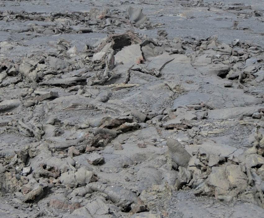 5. Disturbed flat lava IMG_4307aa