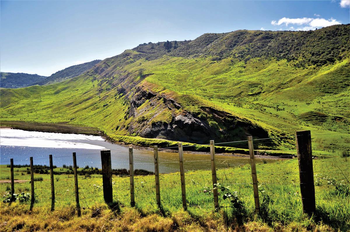 Jesse's Jaunts: New Zealand North Island – Part 1