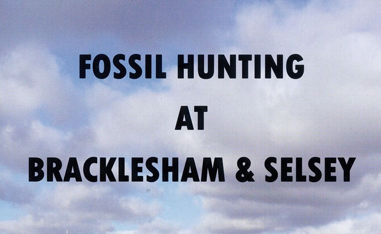 Book review: Fossil Hunting at Bracklesham and Selsey, by David Bone