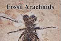 Book review: Fossil Arachnids: Monograph Series Vol 2, by Jason A Dunlop and David Penney
