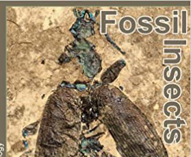Book review: Fossil Insects: An introduction to palaeoentomology, by David Penney and James E Jepson (with artwork by Richard Bizley)