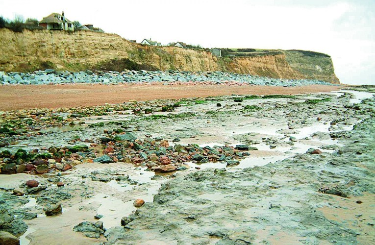 Hastings (Part 2): Geology and fossils