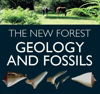 The New Forest: Geology and Fossils, by James Barnet