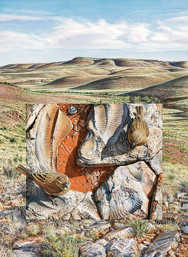Travelling through time: The roadmap for Namibia is in the rocks
