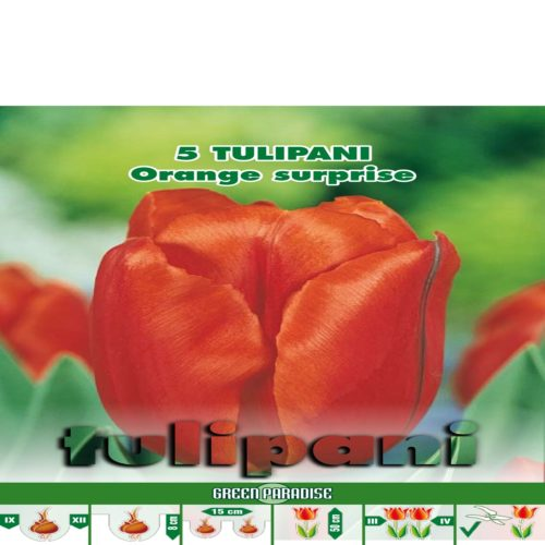 Depozitul de Seminte Tulipani Orange Surprise