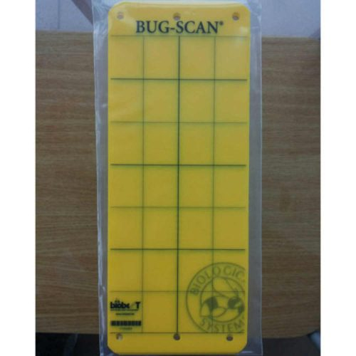 Bug-Scan galbene 10×25