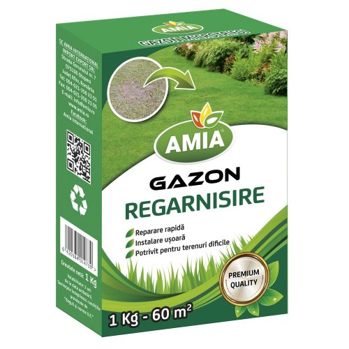 GAZON REGARNISIRE AMIA