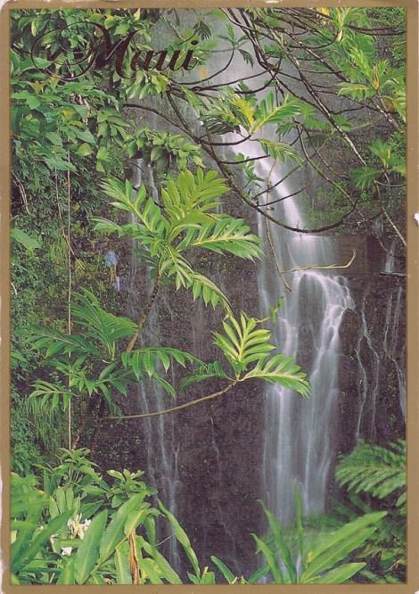 Mark went to Wailua Falls, Maui, Hawaii.