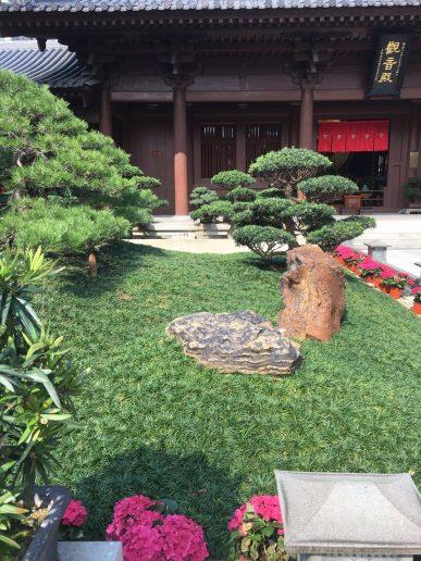 Parterre del jardín interior