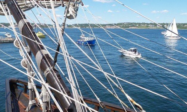 La Regata de Grandes Veleros de Halifax