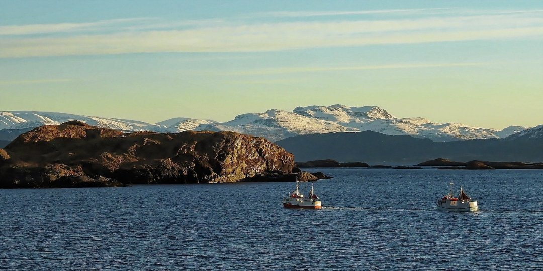 Barcos de pesca en Tansøyosen