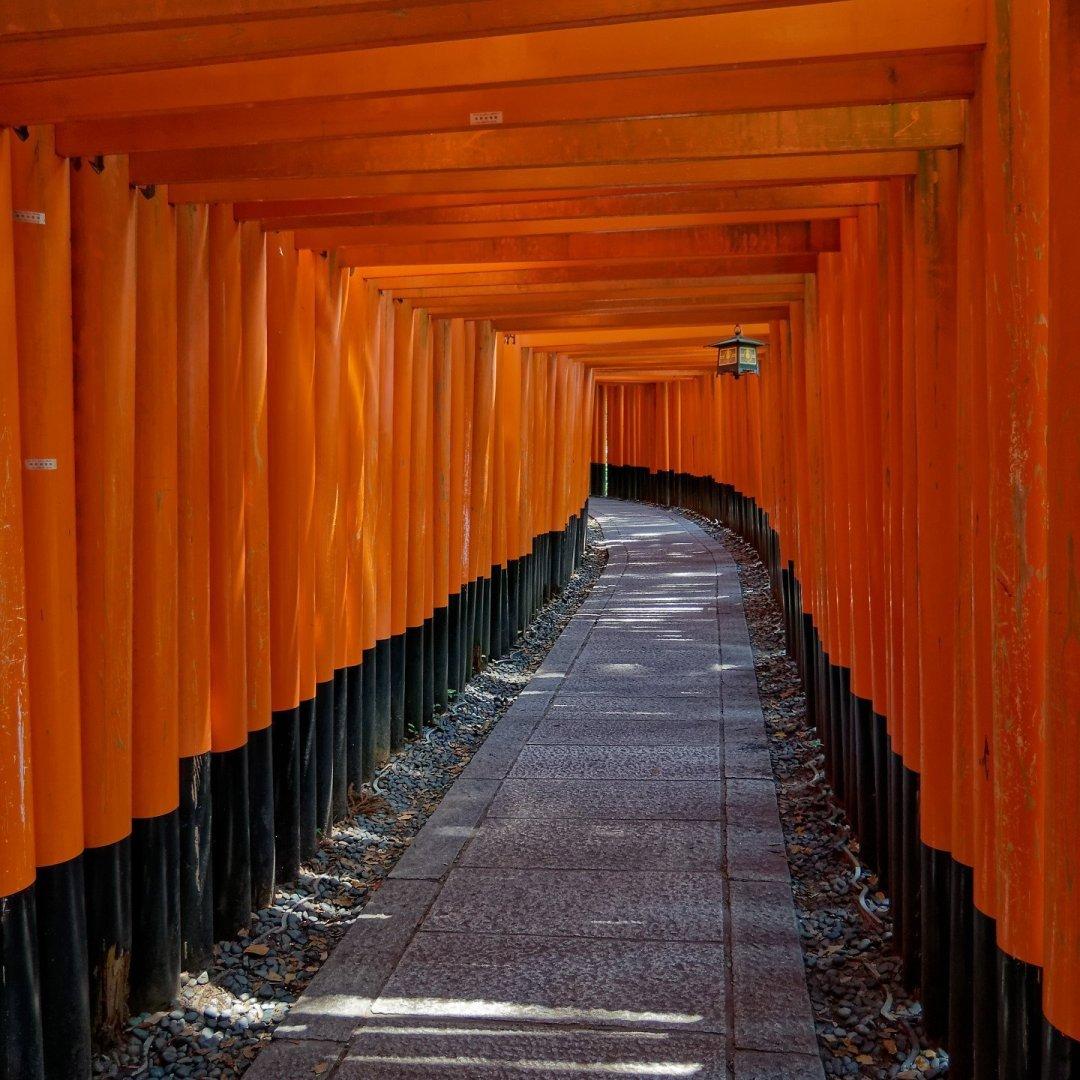 Camino al monte Inari