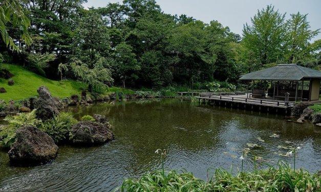 El jardín Momijiyama