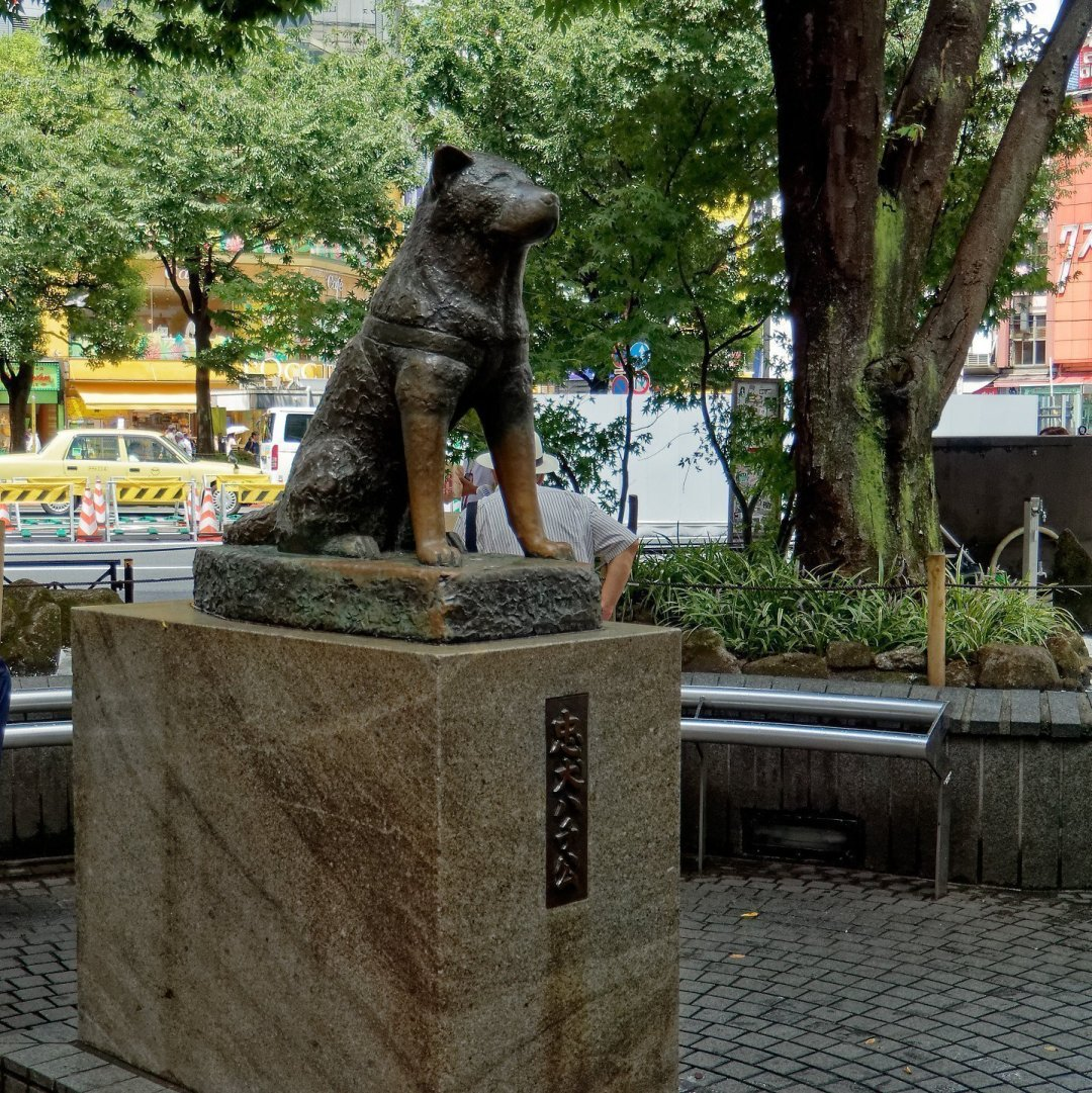 Estatua de Hachikō