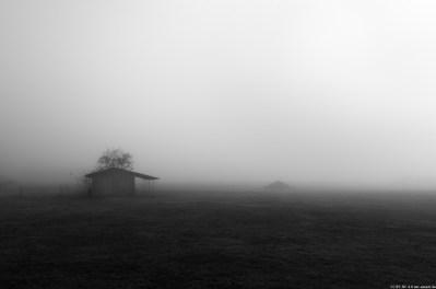 Foto-3835