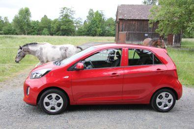 Kia Picanto 2015 Signalrot Seitenansicht