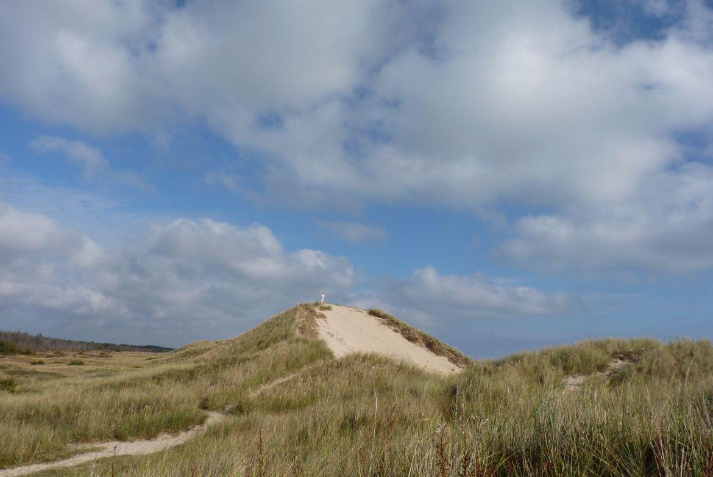 Düne an der dänischen Ostseeküste