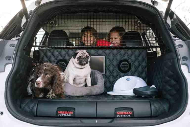 Mit dem Nissan X-Trail auf den Hund gekommen