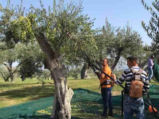 Unterwegs mit Skoda Karoq auf Sizilien