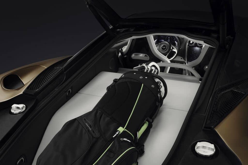 McLaren GT. Ski